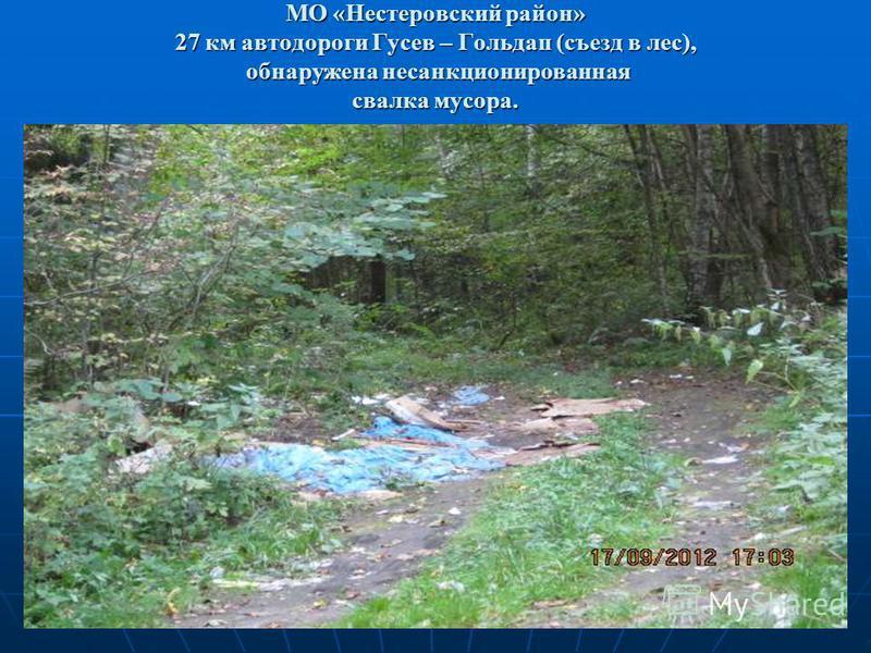 МО «Нестеровский район» 27 км автодороги Гусев – Гольдап (съезд в лес), обнаружена несанкционированная свалка мусора.