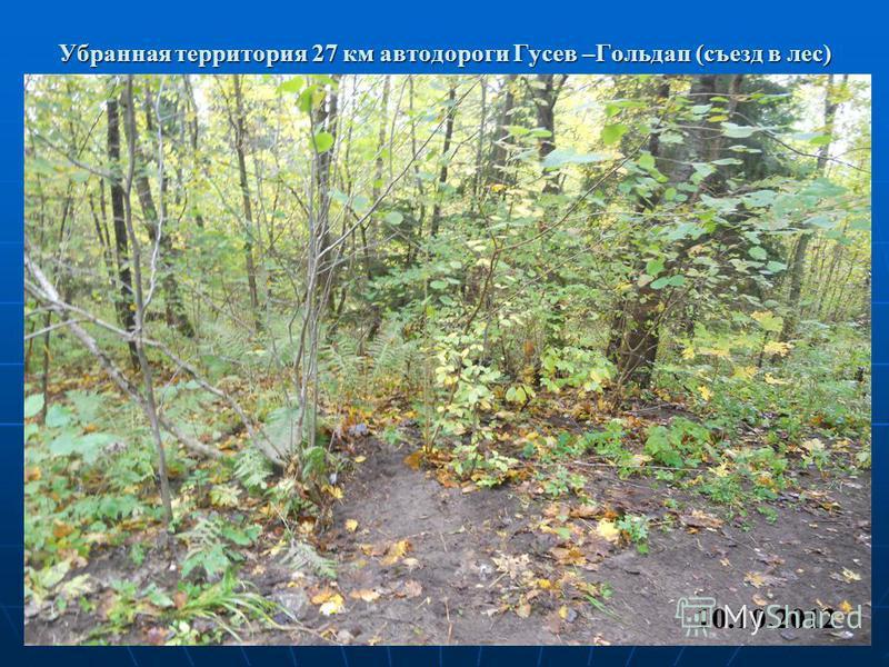 Убранная территория 27 км автодороги Гусев –Гольдап (съезд в лес)