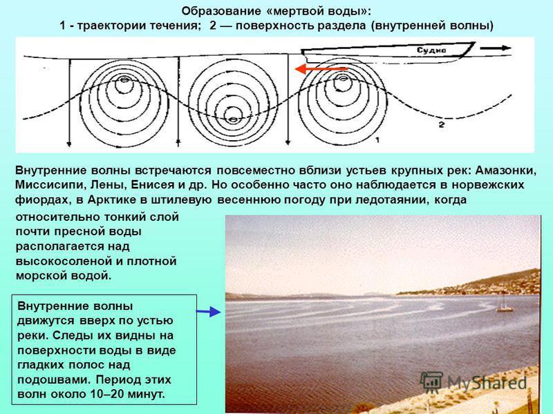 Внутренние волны движутся вверх по устью реки. Следы их видны на поверхности воды в виде гладких полос над подошвами. Период этих волн около 10–20 минут. Внутренние волны встречаются повсеместно вблизи устьев крупных рек: Амазонки, Миссисипи, Лены, Е