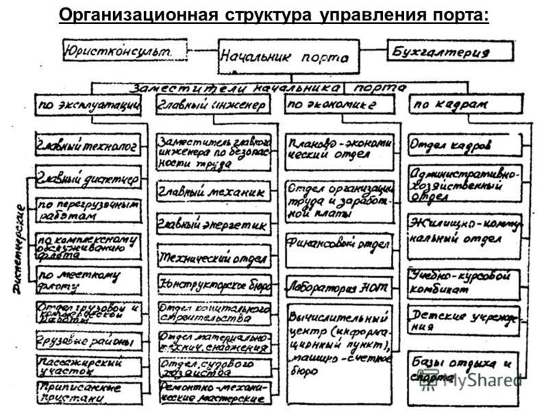 Организационная структура управления порта: