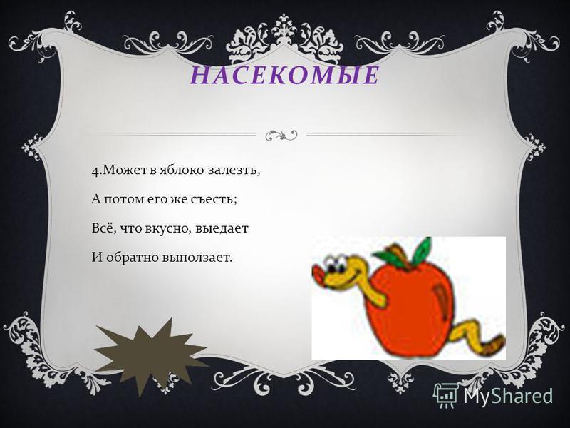 НАСЕКОМЫЕ 4. Может в яблоко залезть, А потом его же съесть ; Всё, что вкусно, выедает И обратно выползает.