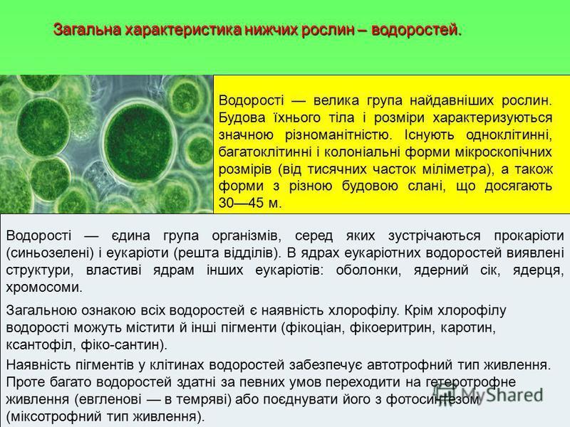 Загальна характеристика нижчих рослин – водоростей. Водорості велика група найдавніших рослин. Будова їхнього тіла і розміри характеризуються значною різноманітністю. Існують одноклітинні, багатоклітинні і колоніальні форми мікроскопічних розмірів (в