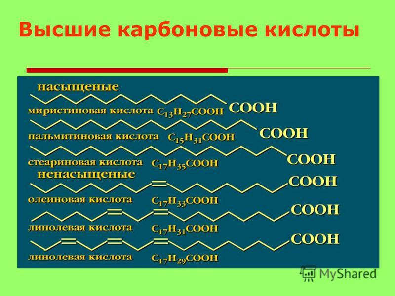 С какими из перечисленных соединений будет реагировать уксусная кислота? Этан, этанол, пропан, гидроксид натрия, соляная кислота, хлор, аммиак, хлорэтан.