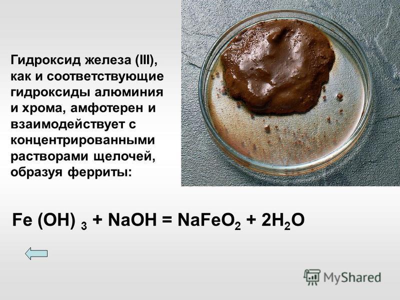 Fe (ОН) 3 + NaOH = NaFeO 2 + 2H 2 O Гидроксид железа (III), как и соответствующие гидроксиды алюминия и хрома, амфотерен и взаимодействует с концентрированными растворами щелочей, образуя ферриты: