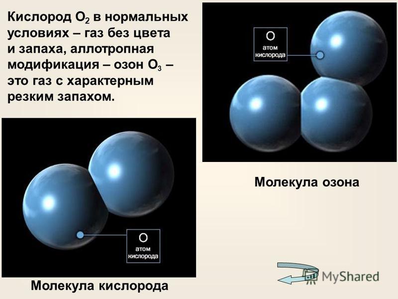 Кислород О 2 в нормальных условиях – газ без цвета и запаха, аллотропная модификация – озон О 3 – это газ с характерным резким запахом. Молекула кислорода Молекула озона