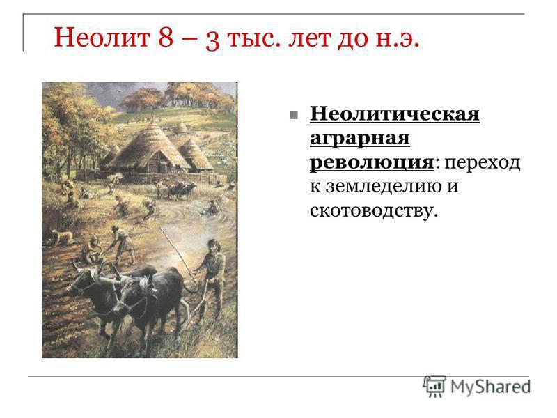 Неолит 8 – 3 тыс. лет до н.э. Неолитическая аграрная революция: переход к земледелию и скотоводству.