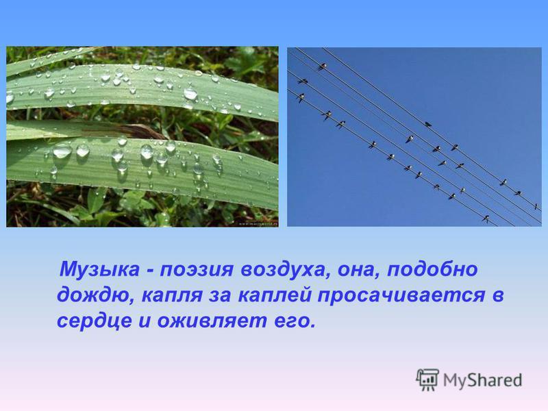 Музыка - поэзия воздуха, она, подобно дождю, капля за каплей просачивается в сердце и оживляет его.