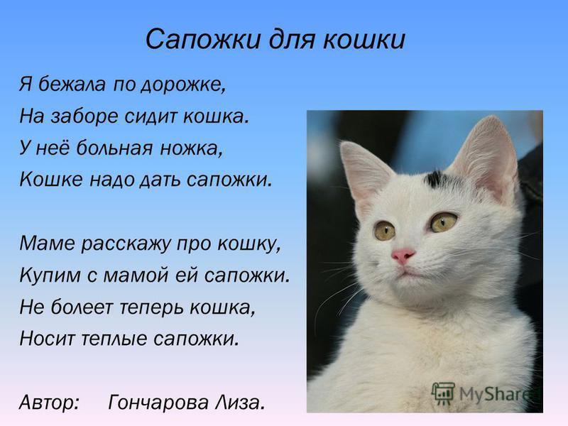 Я бежала по дорожке, На заборе сидит кошка. У неё больная ножка, Кошке надо дать сапожки. Маме расскажу про кошку, Купим с мамой ей сапожки. Не болеет теперь кошка, Носит теплые сапожки. Автор: Гончарова Лиза. Сапожки для кошки