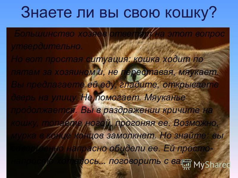 Знаете ли вы свою кошку? Большинство хозяев ответят на этот вопрос утвердительно. Но вот простая ситуация: кошка ходит по пятам за хозяином и, не переставая, мяукает. Вы предлагаете ей еду, гладите, открываете дверь на улицу. Не помогает. Мяуканье пр