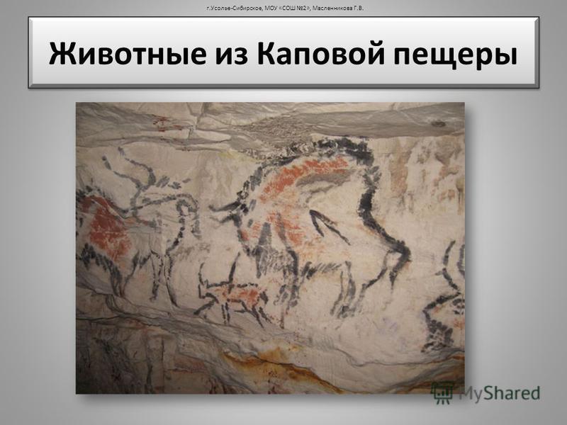 Животные из Каповой пещеры г.Усолье-Сибирское, МОУ «СОШ 2», Масленникова Г.В.