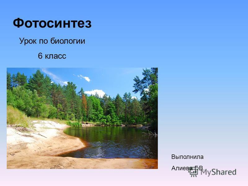 Фотосинтез Урок по биологии 6 класс Выполнила Алиева Г.В.