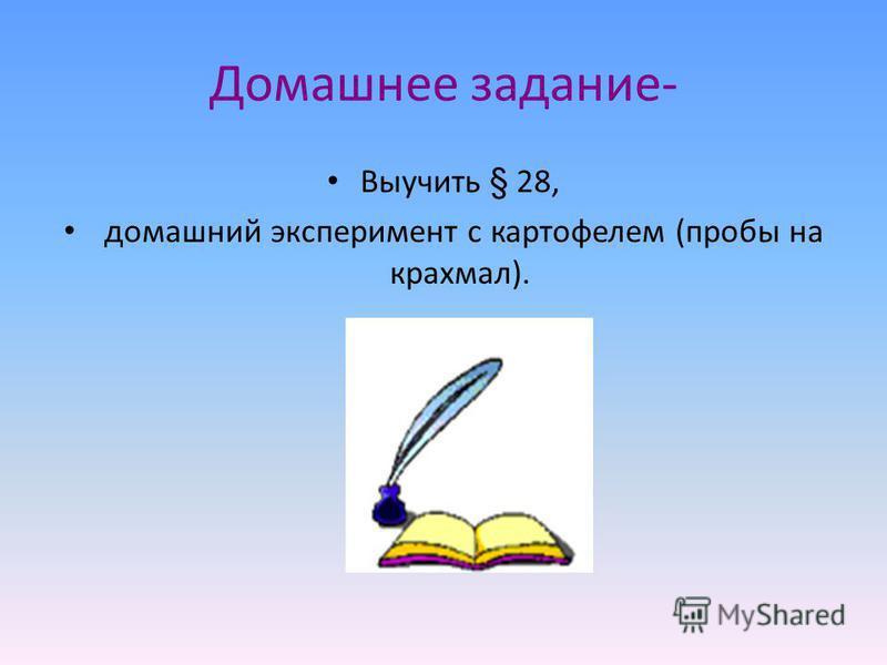 Домашнее задание- Выучить § 28, домашний эксперимент с картофелем (пробы на крахмал).