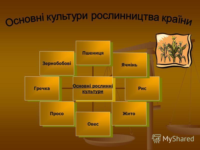 Основні рослинні культури ПшеницяЯчміньРисЖитоОвесПросоГречкаЗернобобові
