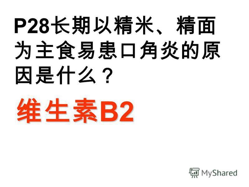 P28 B2 B2