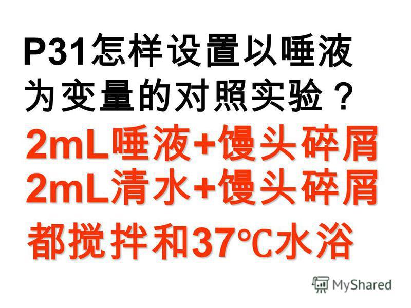 P31 2mL + 2mL + 2mL + 2mL + 37 37