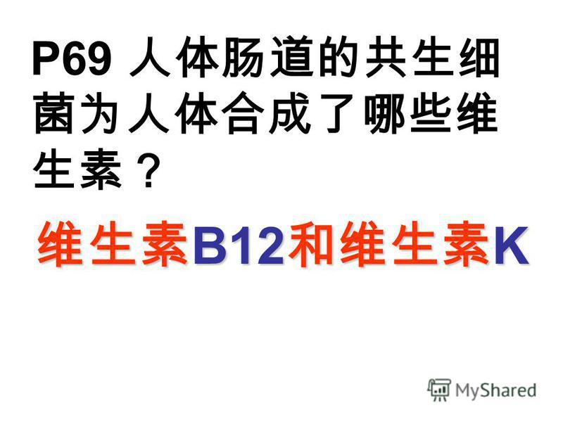 P69 B12 K B12 K