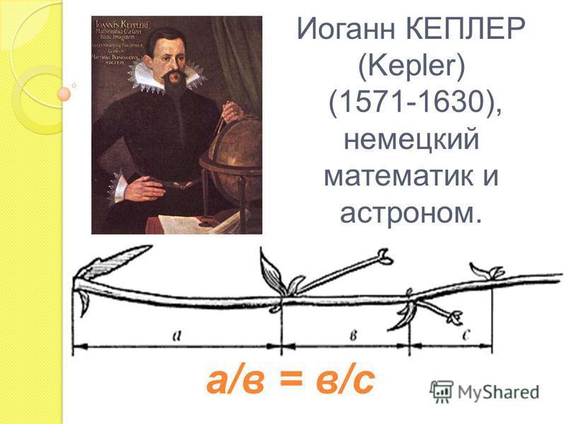 Иоганн КЕПЛЕР (Kepler) (1571-1630), немецкий математик и астроном. а/в = в/с