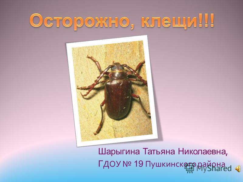 Шарыгина Татьяна Николаевна, Г ДОУ 19 Пушкинского района