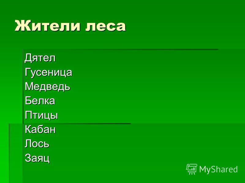 Жители леса Дятел ГусеницаМедведь БелкаПтицы КабанЛось Заяц