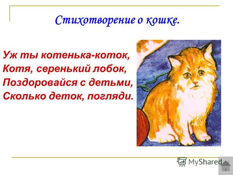 Стихотворение о кошке. Уж ты котенька-коток, Котя, серенький лобок, Поздоровайся с детьми, Сколько деток, погляди.