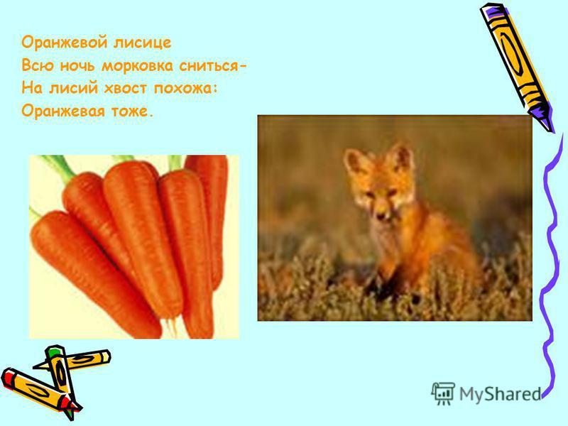 Оранжевой лисице Всю ночь морковка сниться- На лисий хвост похожа: Оранжевая тоже.
