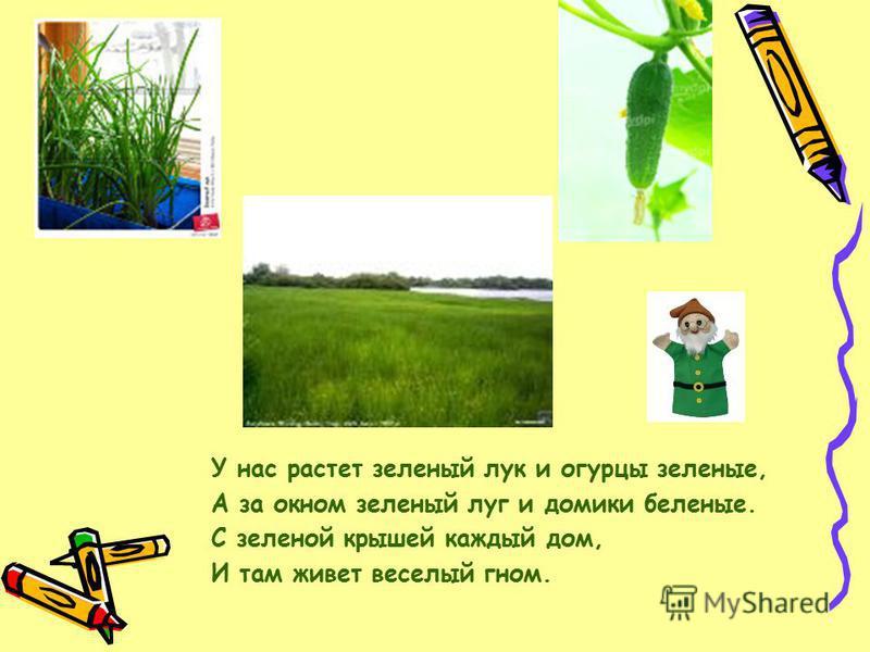 У нас растет зеленый лук и огурцы зеленые, А за окном зеленый луг и домики беленые. С зеленой крышей каждый дом, И там живет веселый гном.
