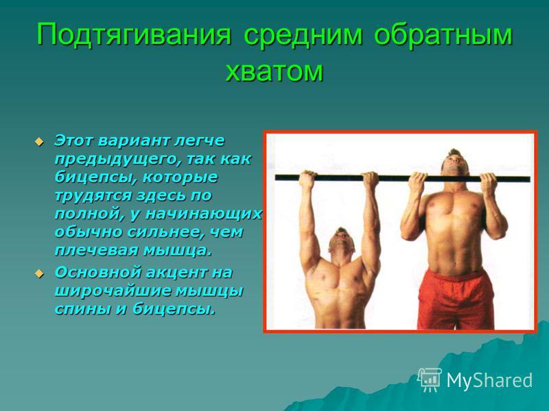 Подтягивания средним обратным хватом Этот вариант легче предыдущего, так как бицепсы, которые трудятся здесь по полной, у начинающих обычно сильнее, чем плечевая мышца. Основной акцент на широчайшие мышцы спины и бицепсы.