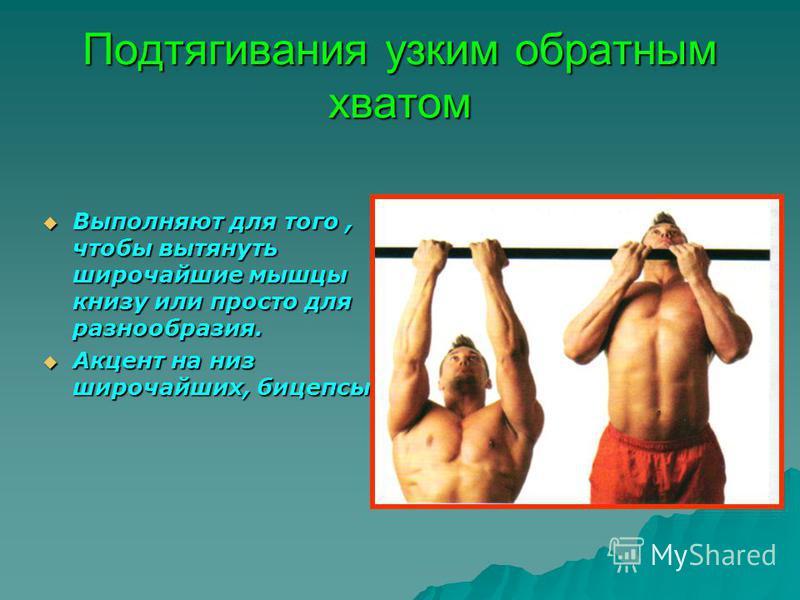 Подтягивания узким обратным хватом Выполняют для того, чтобы вытянуть широчайшие мышцы книзу или просто для разнообразия. Акцент на низ широчайших, бицепсы.