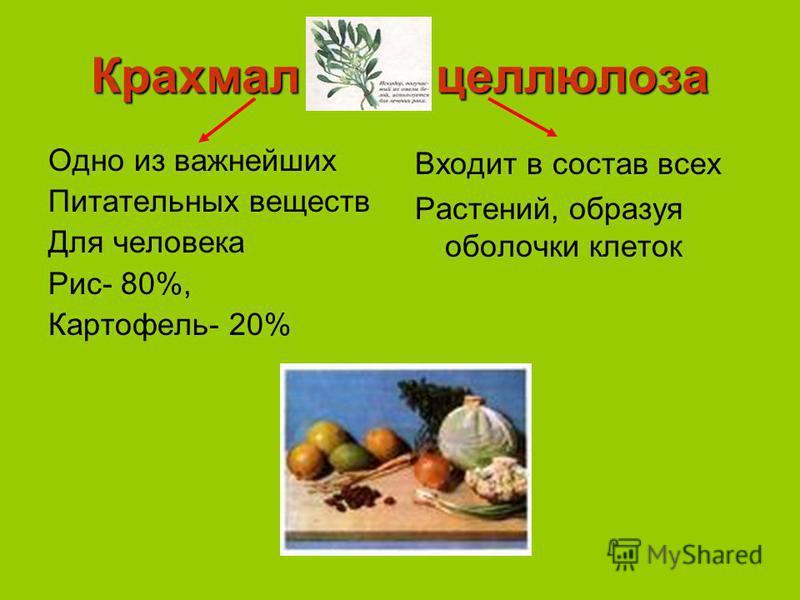 Крахмал целлюлоза Одно из важнейших Питательных веществ Для человека Рис- 80%, Картофель- 20% Входит в состав всех Растений, образуя оболочки клеток