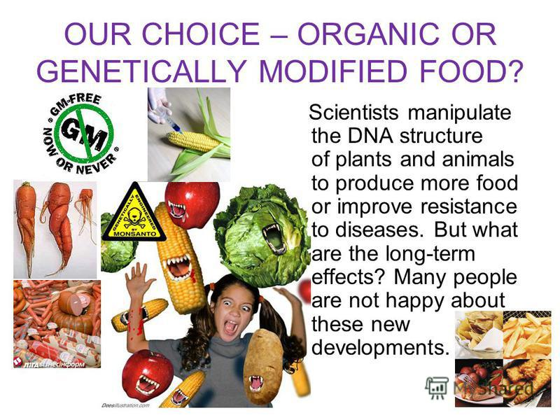 OUR CHOICE – ORGANIC OR GENETICALLY MODIFIED FOOD? Scientists manipulate the DNA structure of plants and animals to produce more food or improve resistance to diseases. But what are the long-term effects? Many people are not happy about these new dev