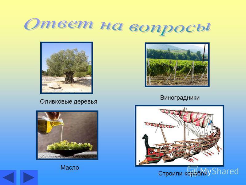 Оливковые деревья Виноградники Масло Строили корабли