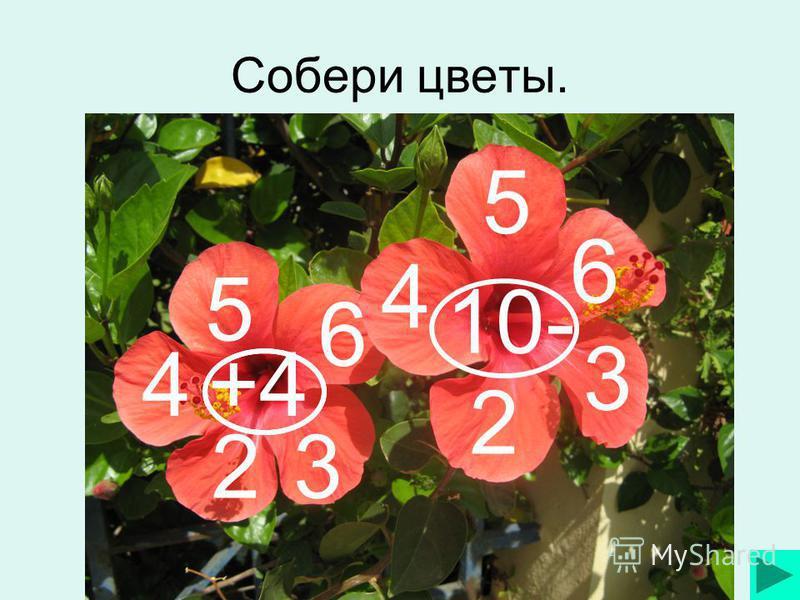 Собери цветы. +4 5 6 32 4 10- 5 6 3 2 4
