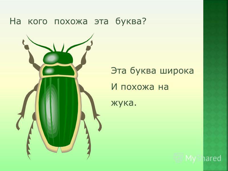 На кого похожа эта буква? Эта буква широка И похожа на жука.