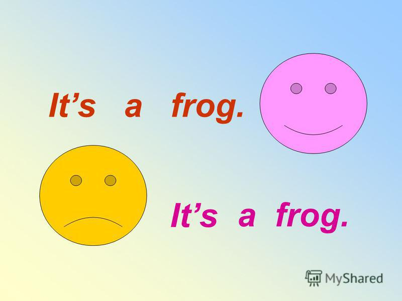 Its a frog. Its not a frog.