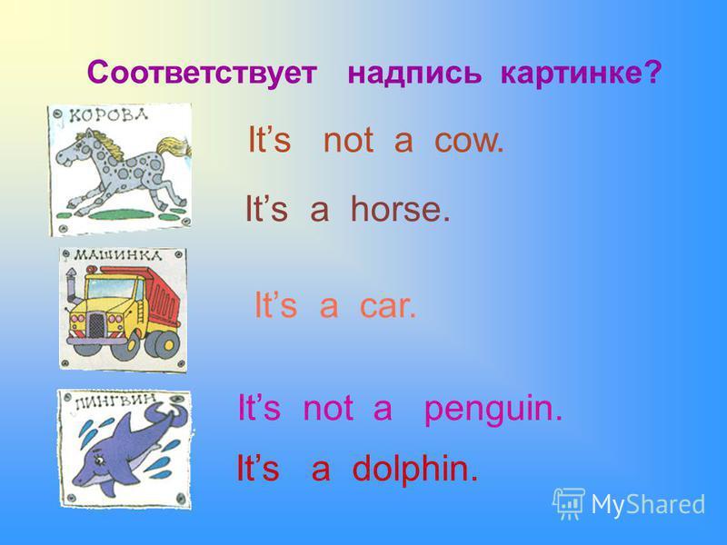 Соответствует надпись картинке? Its not a cow. Its a horse. Its a car. Its not a penguin. Its a dolphin.