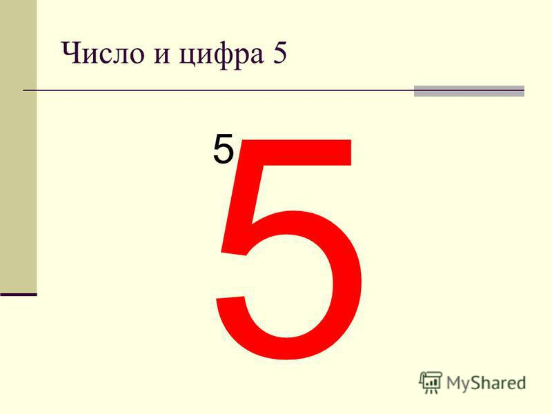 Число и цифра 5 5 5