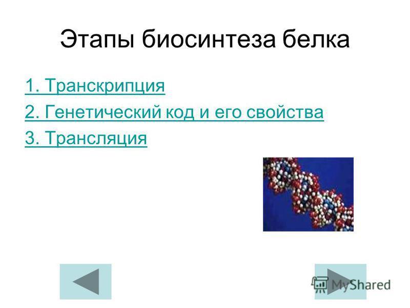 Этапы биосинтеза белка 1. Транскрипция 2. Генетический код и его свойства 3. Трансляция