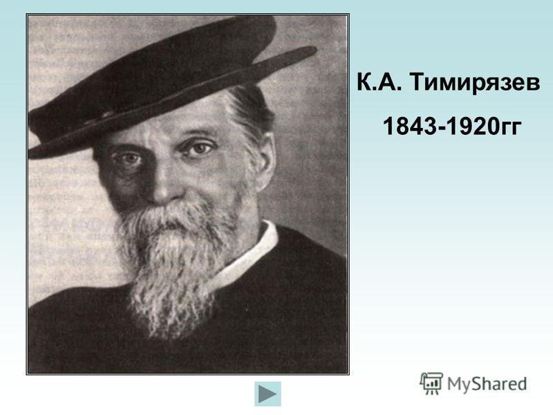К.А. Тимирязев 1843-1920 гг
