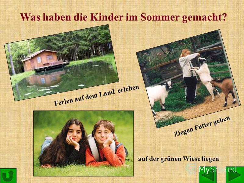 Was haben die Kinder im Sommer gemacht? Ferien auf dem Land erleben Ziegen Futter geben auf der grünen Wiese liegen