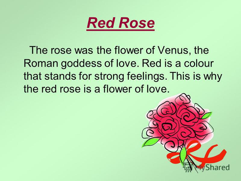 Red Rose The rose was the flower of Venus, the Roman goddess of love. Red is a colour that stands for strong feelings. This is why the red rose is a flower of love.