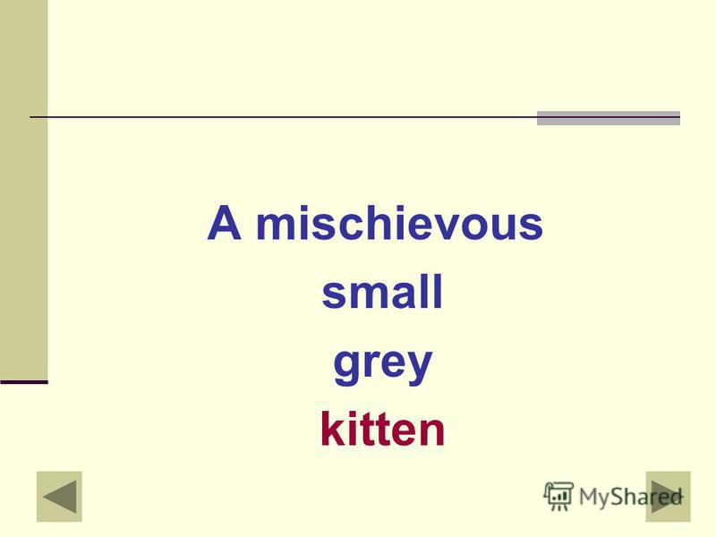 Describe the noun: ??? kitten
