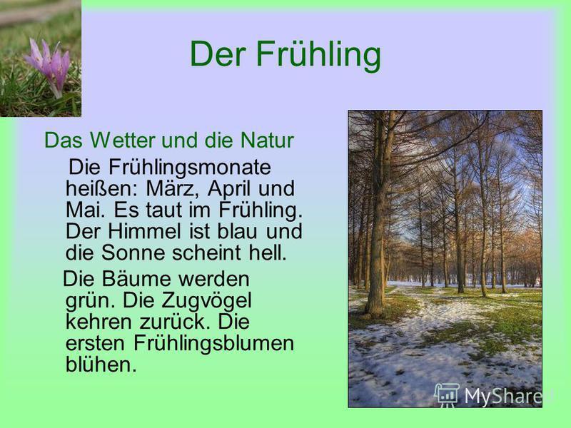 Der Frühling Das Wetter und die Natur Die Frühlingsmonate heißen: März, April und Mai. Es taut im Frühling. Der Himmel ist blau und die Sonne scheint hell. Die Bäume werden grün. Die Zugvögel kehren zurück. Die ersten Frühlingsblumen blühen.