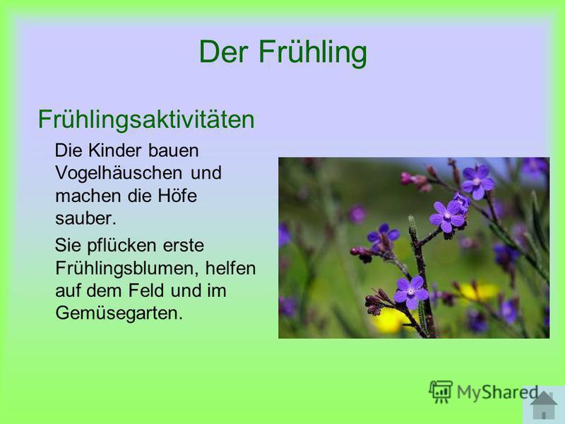 Der Frühling Frühlingsaktivitäten Die Kinder bauen Vogelhäuschen und machen die Höfe sauber. Sie pflücken erste Frühlingsblumen, helfen auf dem Feld und im Gemüsegarten.