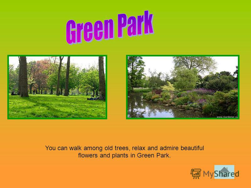 You can walk among old trees, relax and admire beautiful flowers and plants in Green Park.