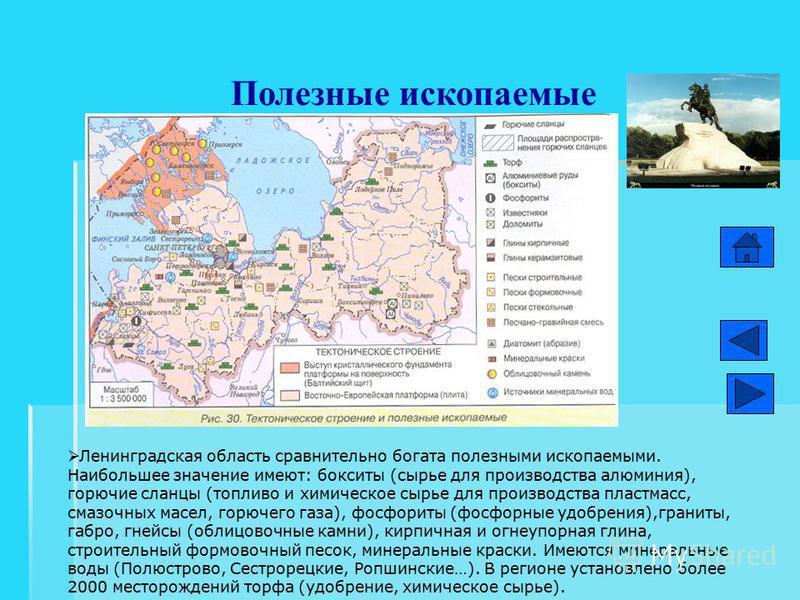 Полезные ископаемые Ленинградская область сравнительно богата полезными ископаемыми. Наибольшее значение имеют: бокситы (сырье для производства алюминия), горючие сланцы (топливо и химическое сырье для производства пластмасс, смазочных масел, горючег