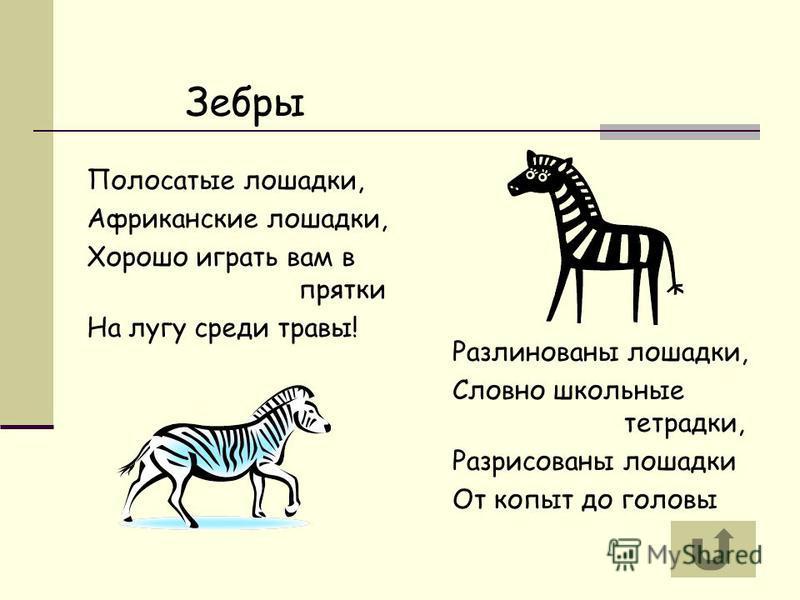 Зебры Полосатые лошадки, Африканские лошадки, Хорошо играть вам в прятки На лугу среди травы! Разлинованы лошадки, Словно школьные тетрадки, Разрисованы лошадки От копыт до головы