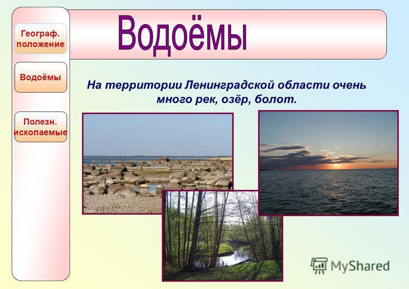 Полезн. ископаемые Водоёмы Географ. положение На территории Ленинградской области очень много рек, озёр, болот.