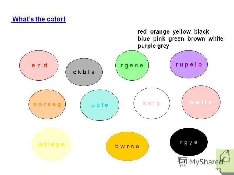 Whats the color! n o r a e g w l l e y o r g e n e b w r n o h w t I e r g y e red orange yellow black blue pink green brown white purple grey r u p e l p c k b l a k n i p e r d u b I e