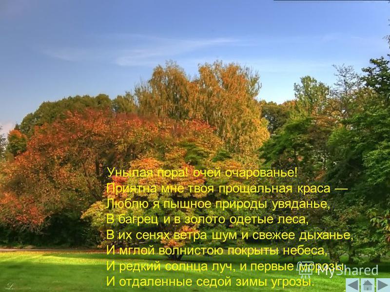Унылая пора! очей очарованье! Приятна мне твоя прощальная краса Люблю я пышное природы увяданье, В багрец и в золото одетые леса, В их сенях ветра шум и свежее дыханье, И мглой волнистою покрыты небеса, И редкий солнца луч, и первые морозы, И отдален