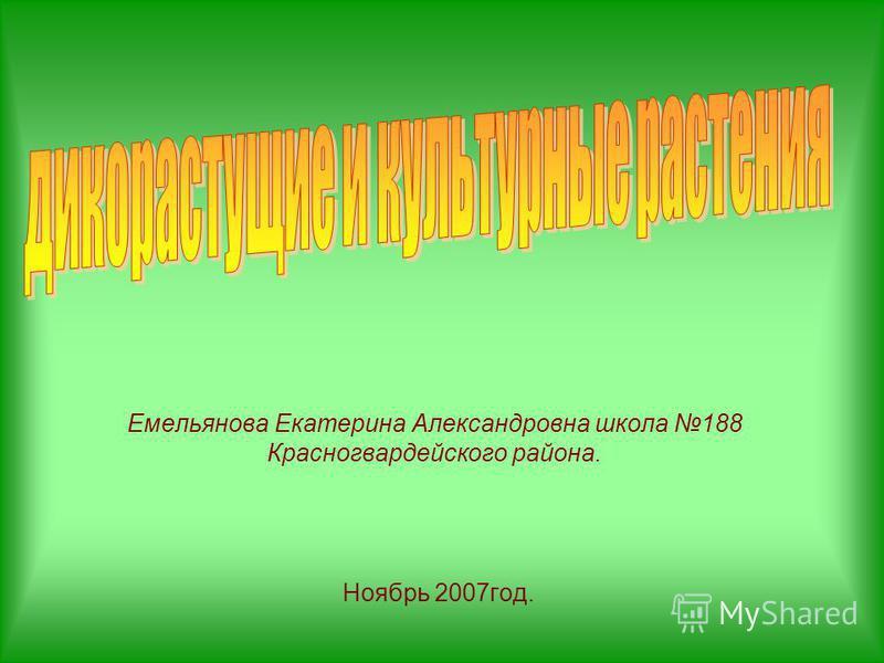 Емельянова Екатерина Александровна школа 188 Красногвардейского района. Ноябрь 2007 год.